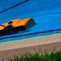 Робот-пылесос для чистки бассейна Dolphin Wave 200 XL