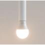 Лампа светодиодная ELARI SmartLED Color, E27, A60, 6Вт