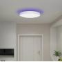 Потолочная лампа Xiaomi Yeelight Arwen Ceiling Light 450S (White) YLXD013