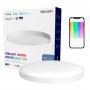 Потолочная лампа Xiaomi Yeelight Arwen Ceiling Light 550S (White) YLXD013-A