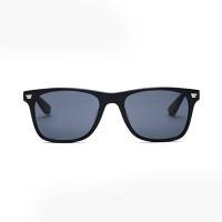 Xiaomi Turok Steinhardt Sunglasses SR004 солнцезащитные black